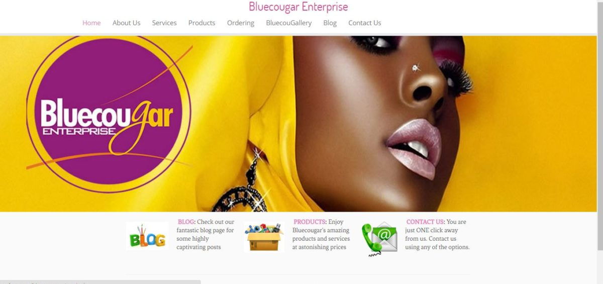 Cosmetic Makeup and Fashion Business